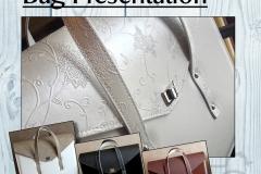 Bag-presentation