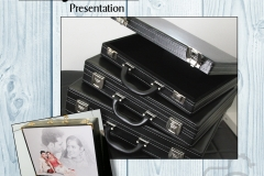 carry-case